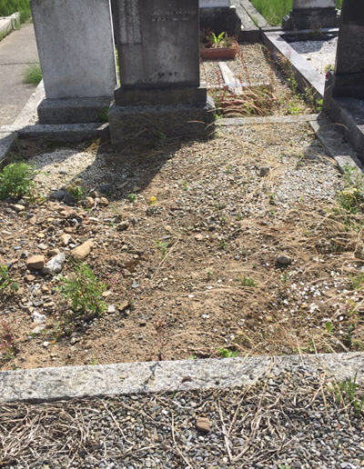 Deansgrange cemetery Before & After 4 (1)
