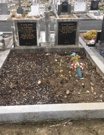 Deansgrange cemetery Before & After 6 (4)