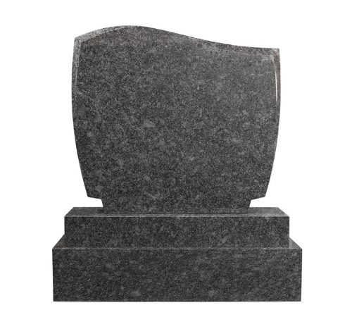 MH 5446